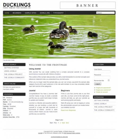 Duckling. Шаблон сайта о животных для Joomla 2.5
