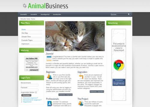 AnimalBusiness. Шаблон сайта о животных для Joomla 2.5
