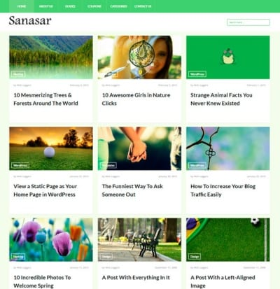 Шаблон WordPress - Sanasar