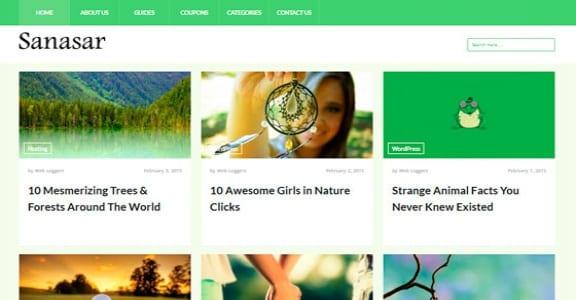 Шаблон Wordpress - Sanasar