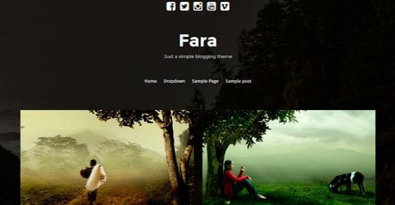Шаблон Wordpress - Fara
