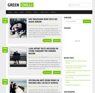 Шаблон WordPress - GreenChilli
