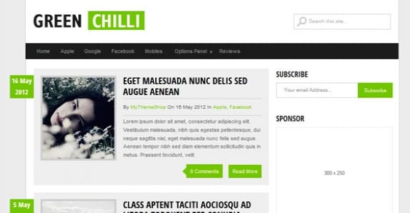 Шаблон Wordpress - GreenChilli