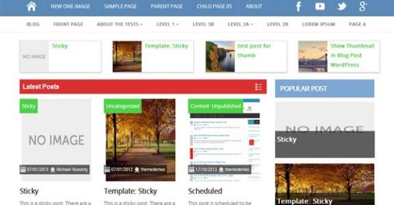 Шаблон Wordpress - ProMax