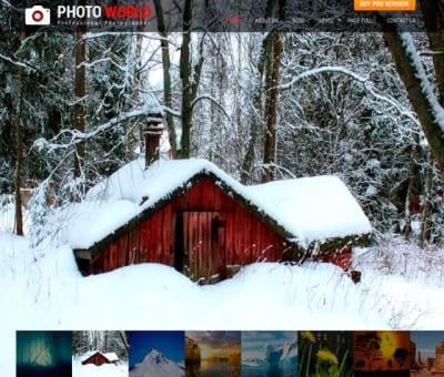 Шаблон WordPress - SKT Photo World