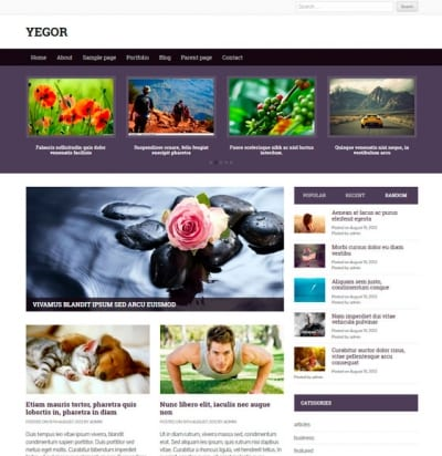 Шаблон WordPress - Yegor