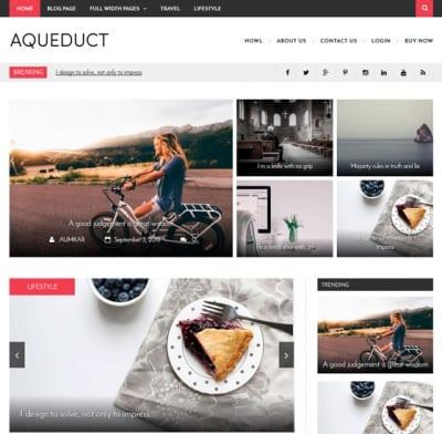 Шаблон WordPress - Aqueduct