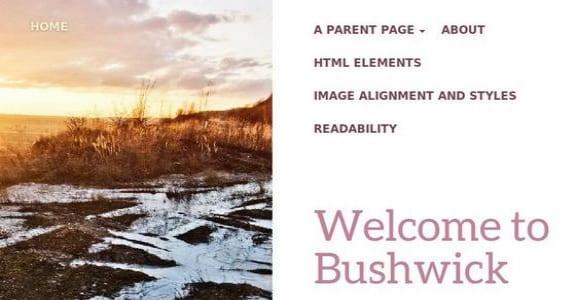 Шаблон Wordpress - Bushwick