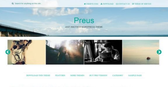 Шаблон Wordpress - Preus