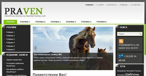 Шаблон Wordpress - Praven