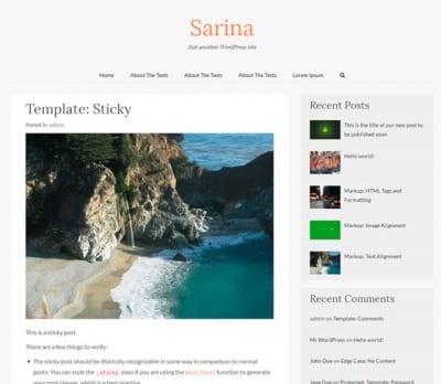 Шаблон WordPress - Sarina