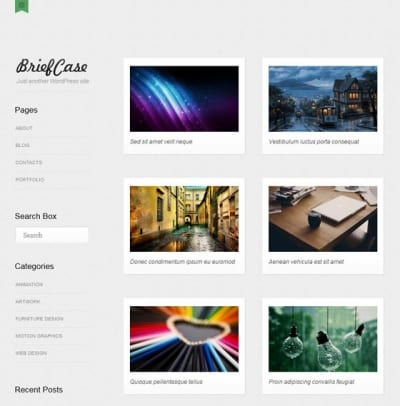Шаблон WordPress - Briefcase