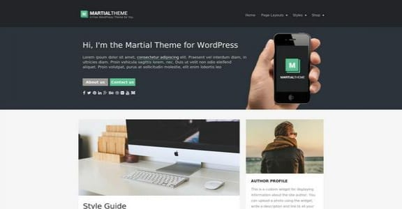 Шаблон Wordpress - Martial Lite
