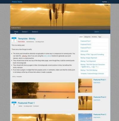 Шаблон WordPress - Polaris