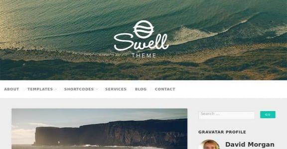 Шаблон Wordpress - Swell Lite