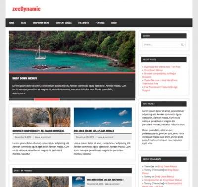 Шаблон WordPress - zeeDynamic