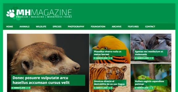Шаблон Wordpress - MH Biosphere