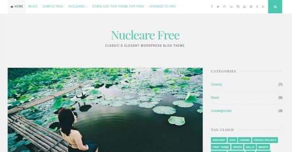 Шаблон Wordpress - Nucleare