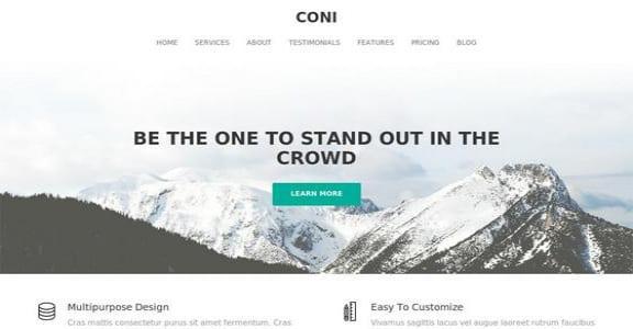 Шаблон Wordpress - Coni