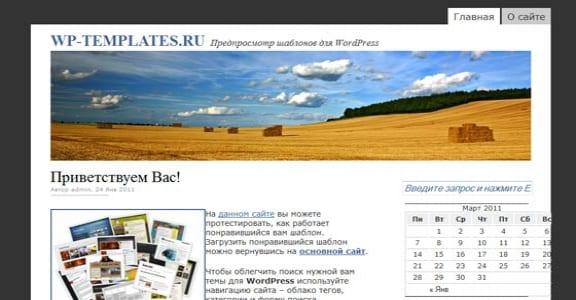 Шаблон Wordpress - This Just In