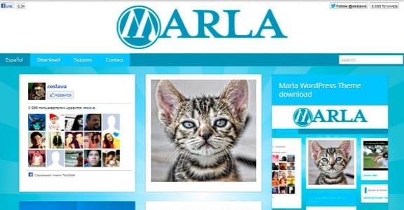 Шаблон Wordpress - Marla