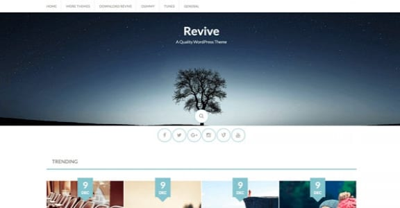 Шаблон Wordpress - Revive
