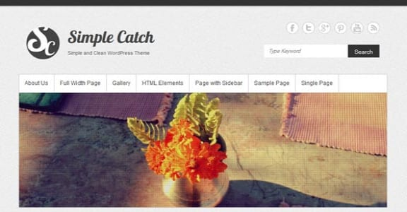 Шаблон Wordpress - Simple Catch