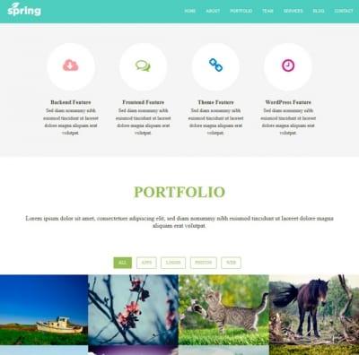 Шаблон WordPress - Spring