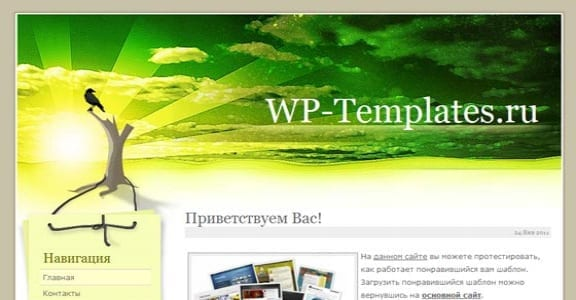Шаблон Wordpress - Surreal