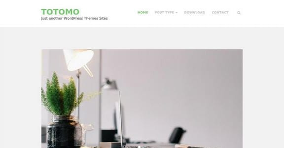 Шаблон Wordpress - Totomo