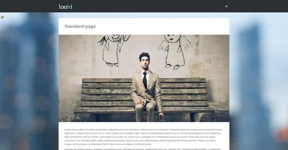 Шаблон Wordpress - Looki Lite