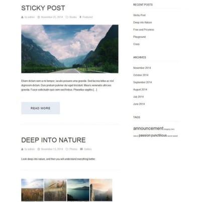 Шаблон WordPress - Aileron