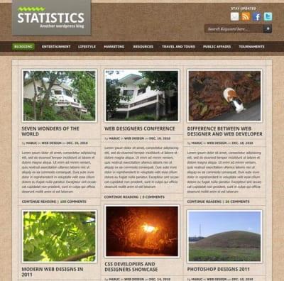 Шаблон WordPress - Statistics