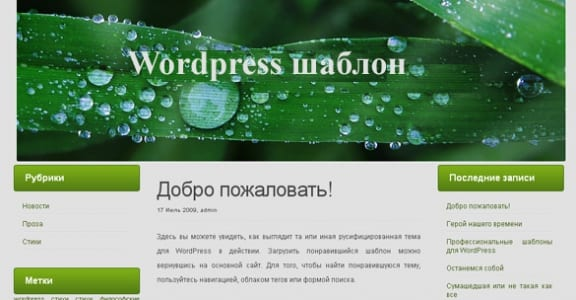 Шаблон Wordpress - Detachable