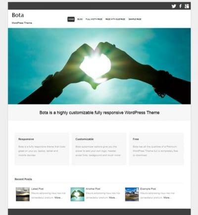 Шаблон WordPress - Bota