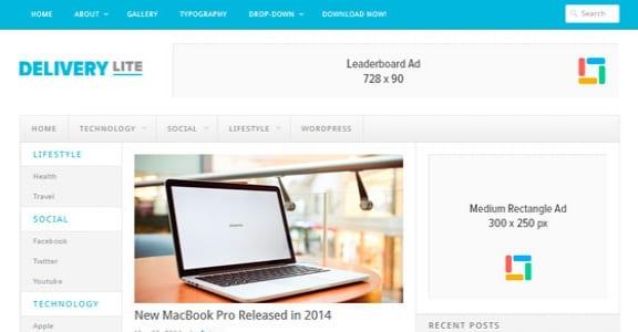 Шаблон Wordpress - Delivery Lite
