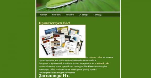 Шаблон Wordpress - Frog