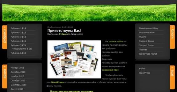 Шаблон Wordpress - BeautyPoem