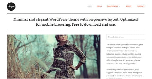 Шаблон Wordpress - Origin