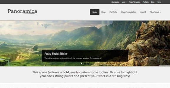 Шаблон Wordpress - Panoramica