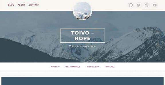 Шаблон Wordpress - Toivo Lite