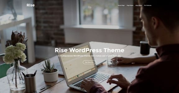 Шаблон Wordpress - Rise