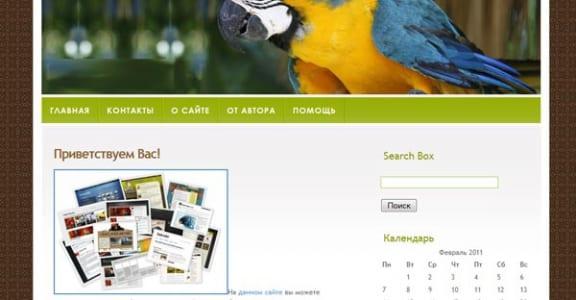Шаблон Wordpress - Colourful Bird