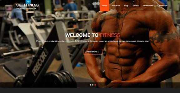Шаблон Wordpress - Fitness Lite