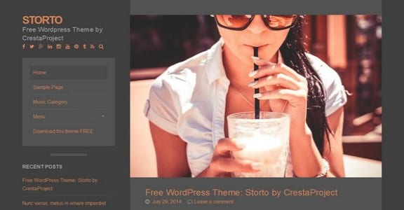 Шаблон Wordpress - Storto