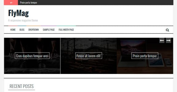 Шаблон Wordpress - FlyMag
