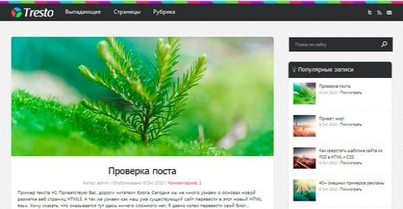 Шаблон Wordpress - Tresto
