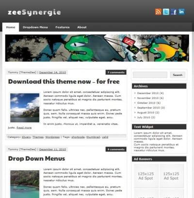 Шаблон WordPress - zeeSynergie