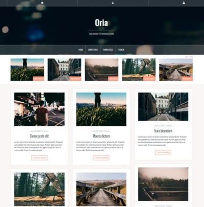 Шаблон WordPress - ORIA