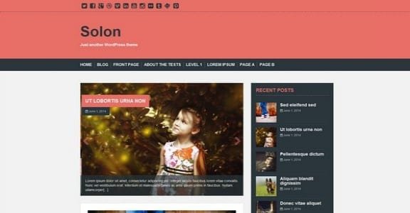 Шаблон Wordpress - Solon
